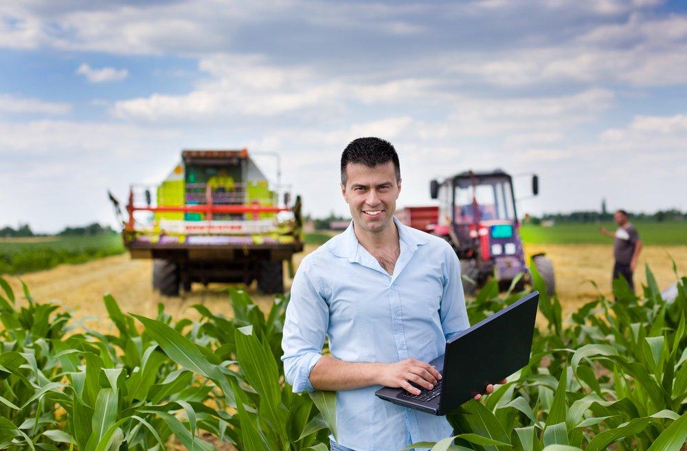 Выбор бизнеса в сельской местности